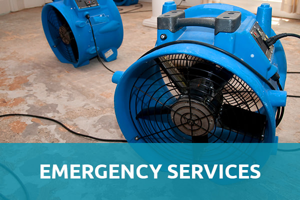 "Closed up of 2 blue colored water damage restoration equipment with air fan and wiring are placed on top of a damaged floor with the header title that says ""Emergency Services"" and that is one of the services of carpet cleaning Albuquerque."